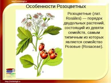 Особенности Розоцветных Розоцветные (лат. Rosáles) — порядок двудольных расте...