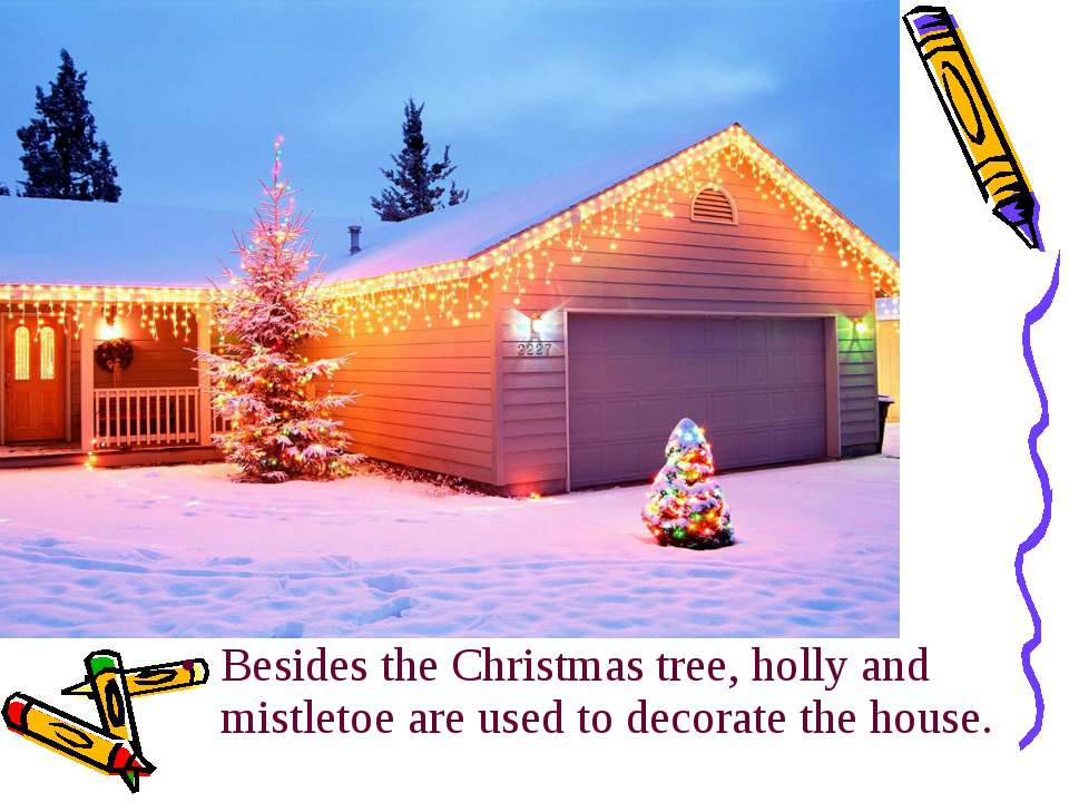 Besides the Christmas tree, holly and mistletoe are used to decorate the house.