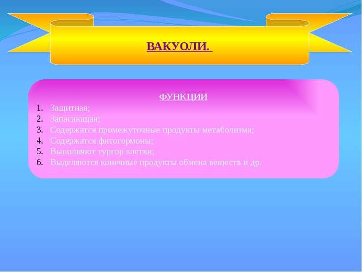 ВАКУОЛИ. ФУНКЦИИ Защитная; Запасающая; Содержатся промежуточные продукты мета...