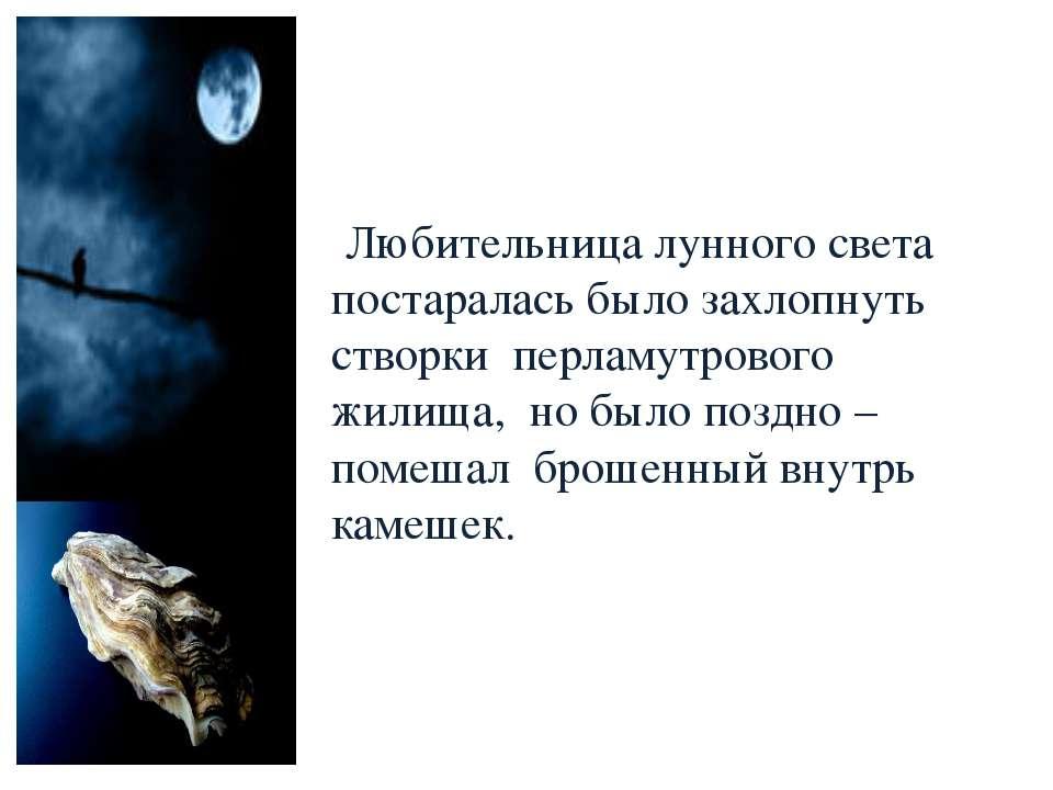 Любительница лунного света постаралась было захлопнуть створки перламутрового...