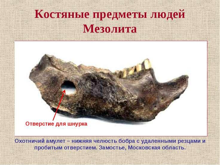 Костяные предметы людей Мезолита Охотничий амулет – нижняя челюсть бобра с уд...