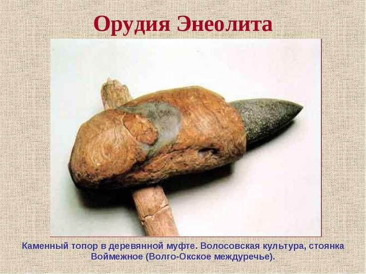 Орудия Энеолита Каменный топор в деревянной муфте. Волосовская культура, стоя...
