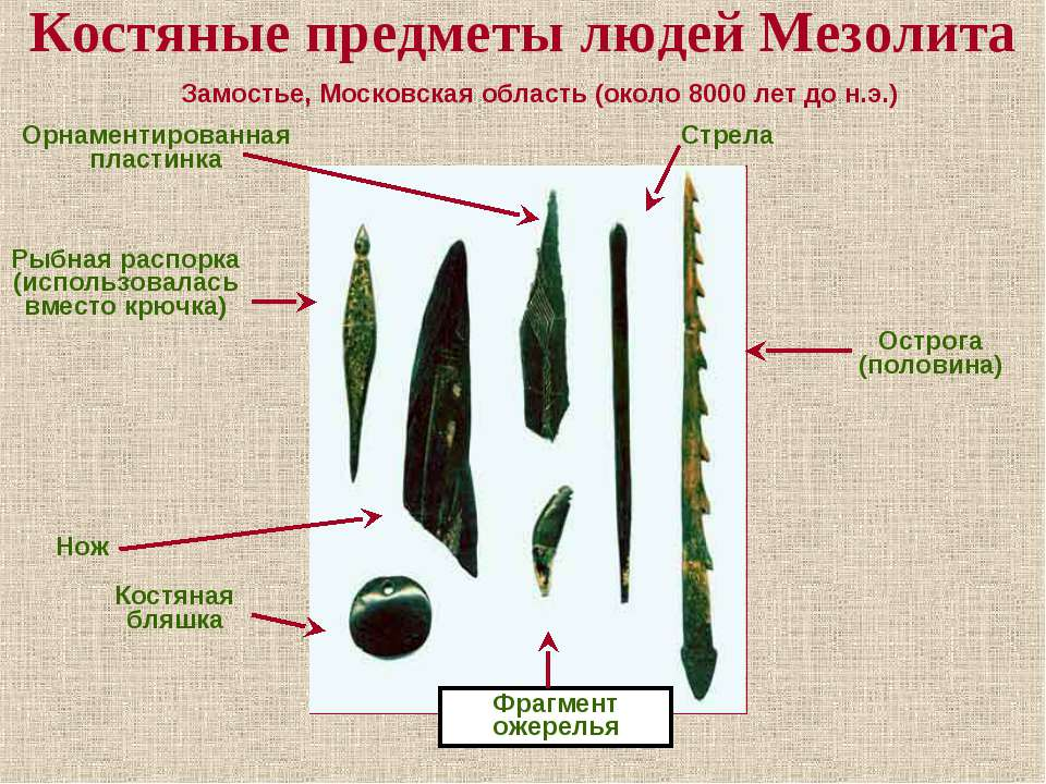 Костяные предметы людей Мезолита Замостье, Московская область (около 8000 лет...