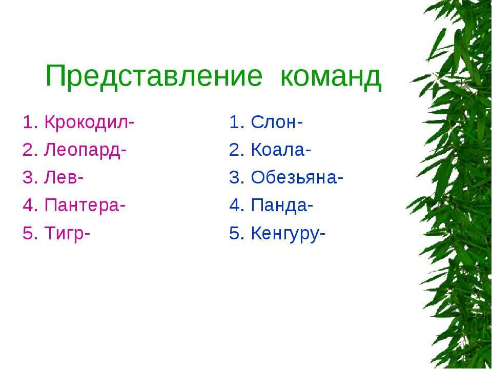 Представление команд 1. Крокодил- 2. Леопард- 3. Лев- 4. Пантера- 5. Тигр- 1....