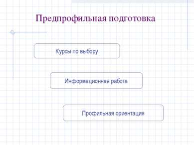Предпрофильная подготовка Курсы по выбору Информационная работа Профильная ор...