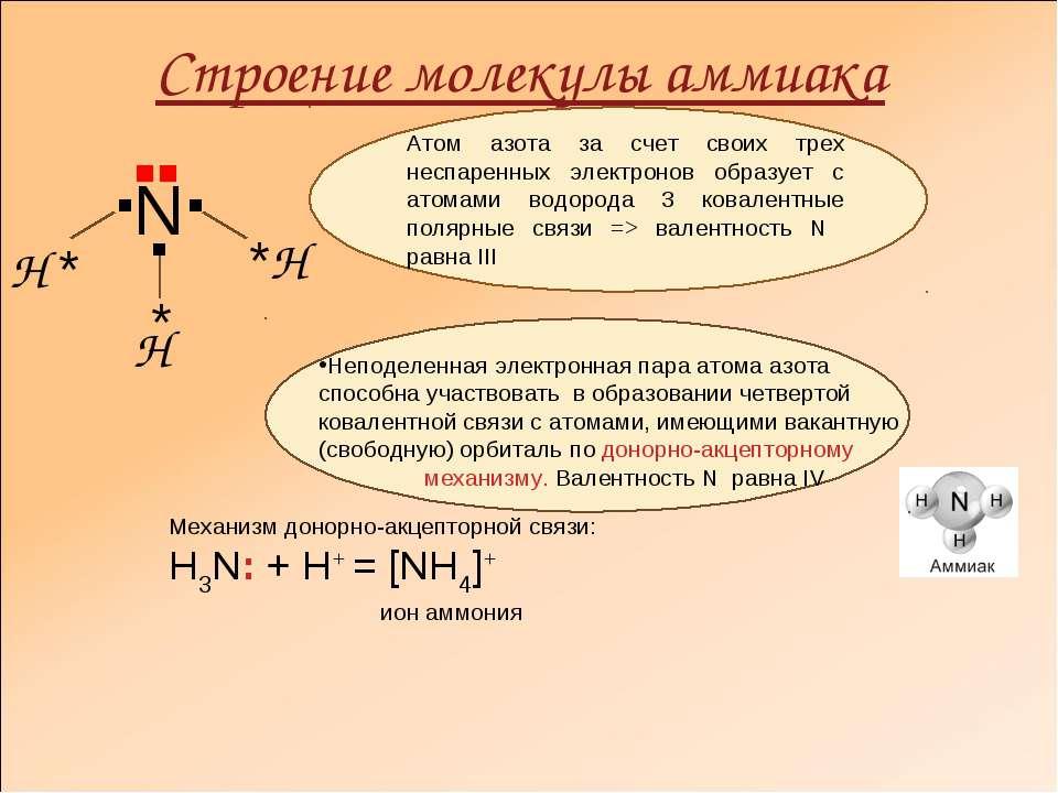 Строение молекулы аммиака ▪ ▪ ▪ Н * * *Н Н │ N ▪▪ Атом азота за счет своих тр...