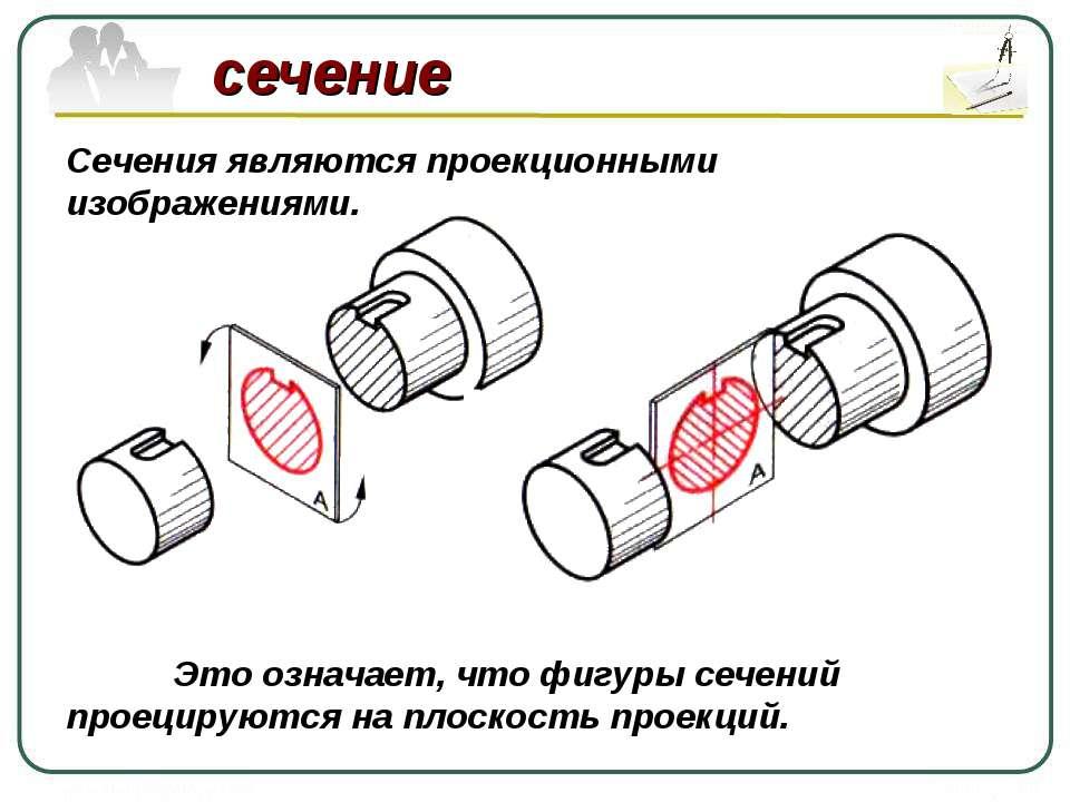 сечение Сечения являются проекционными изображениями. Это означает, что фигур...