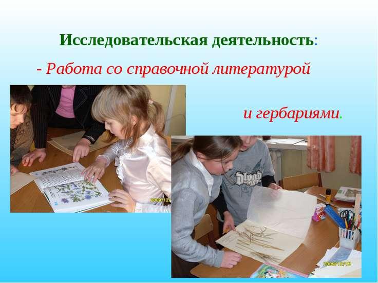 Исследовательская деятельность: - Работа со справочной литературой и гербариями.
