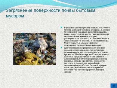 Загрязнение поверхности почвы бытовым мусором. Городские свалки промышленного...