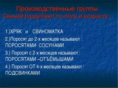 Производственные группы Свиней разделяют по полу и возрасту : 1.)ХРЯК и СВИНО...