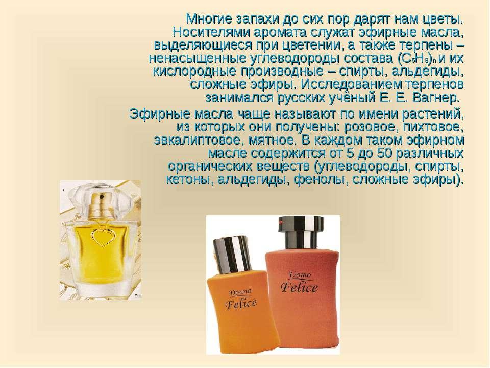 Многие запахи до сих пор дарят нам цветы. Носителями аромата служат эфирные м...