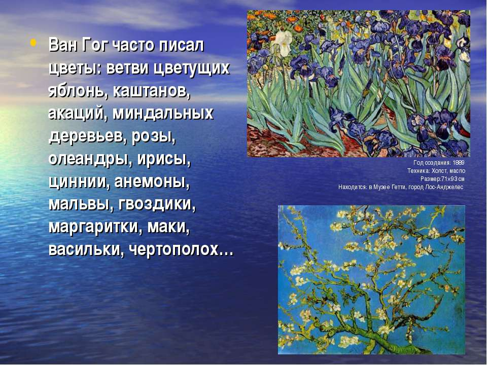 Ван Гог часто писал цветы: ветви цветущих яблонь, каштанов, акаций, миндальны...