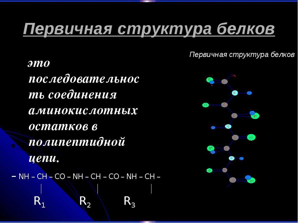 Первичная структура белков это последовательность соединения аминокислотных о...