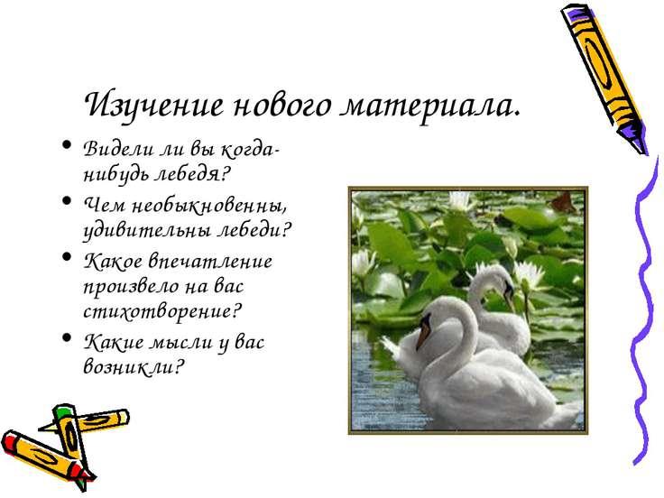 Изучение нового материала. Видели ли вы когда-нибудь лебедя? Чем необыкновенн...