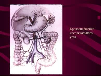 Кровоснабжение илеоцекального угла