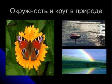 Окружность и круг в природе