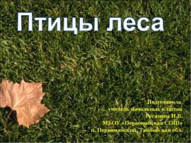 Подготовила учитель начальных классов Рогатина И.В. МБОУ «Первомайская СОШ» п...