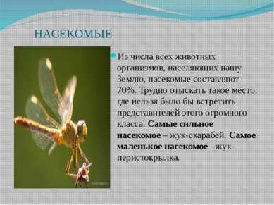 НАСЕКОМЫЕ Из числа всех животных организмов, населяющих нашу Землю, насекомые...