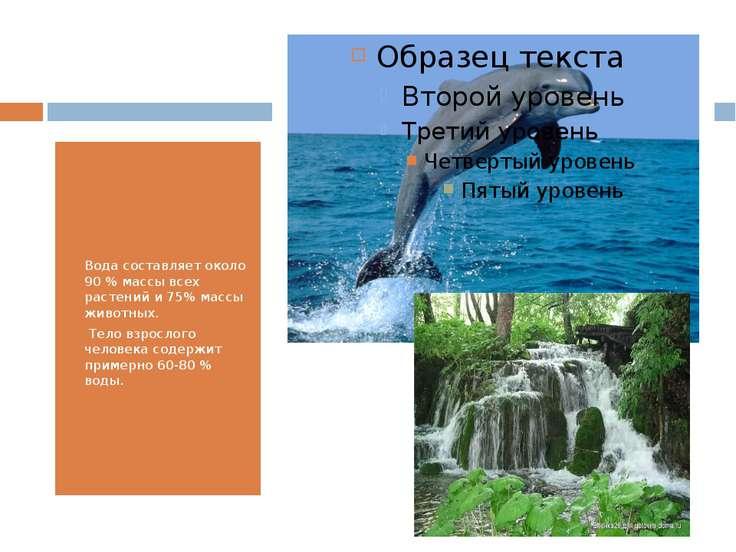 Вода составляет около 90 % массы всех растений и 75% массы животных. Тело взр...