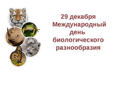 29 декабря Международный день биологического разнообразия