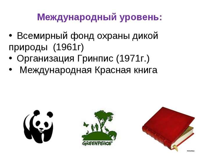 Международный уровень: Всемирный фонд охраны дикой природы (1961г) Организаци...