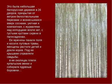 Это была небольшая белорусская деревня в 26 дворов, прикрытая от ветров белос...
