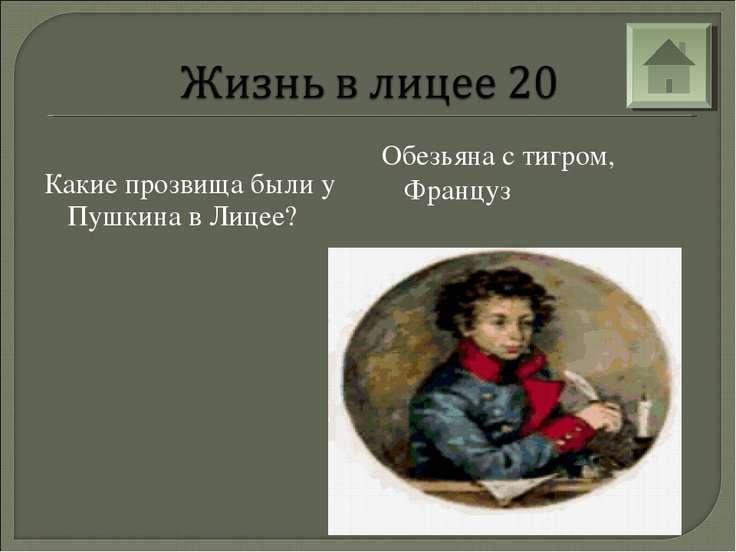 Какие прозвища были у Пушкина в Лицее? Обезьяна с тигром, Француз