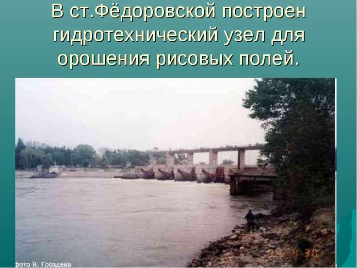 В ст.Фёдоровской построен гидротехнический узел для орошения рисовых полей.