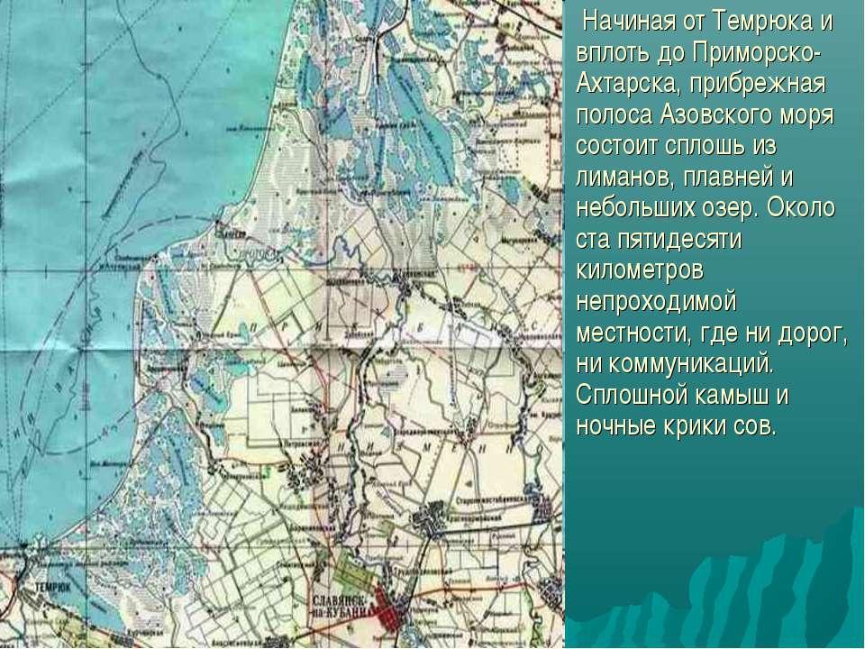 Начиная от Темрюка и вплоть до Приморско-Ахтарска, прибрежная полоса Азовског...