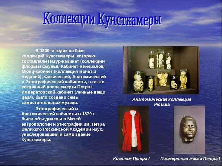 В 1830–х годах на базе коллекций Кунсткамеры, которую составляли Натур-кабине...
