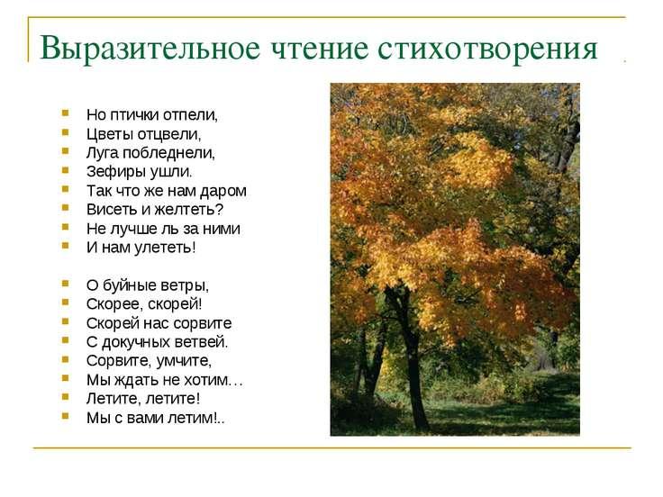 Выразительное чтение стихотворения Но птички отпели, Цветы отцвели, Луга побл...