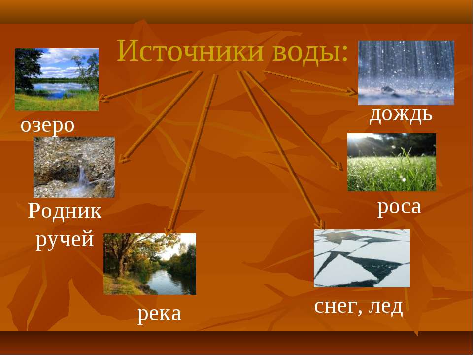 Источники воды: озеро Родник ручей река дождь роса снег, лед