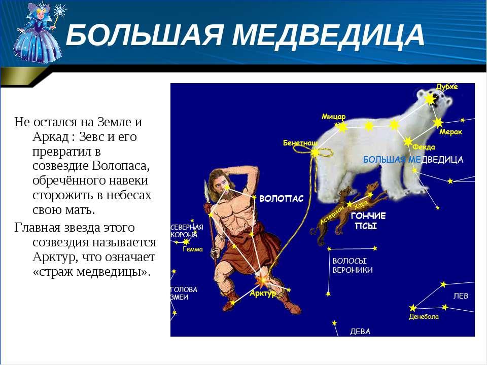 БОЛЬШАЯ МЕДВЕДИЦА Не остался на Земле и Аркад : Зевс и его превратил в созвез...