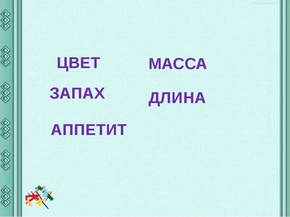 ЦВЕТ ЗАПАХ АППЕТИТ МАССА ДЛИНА
