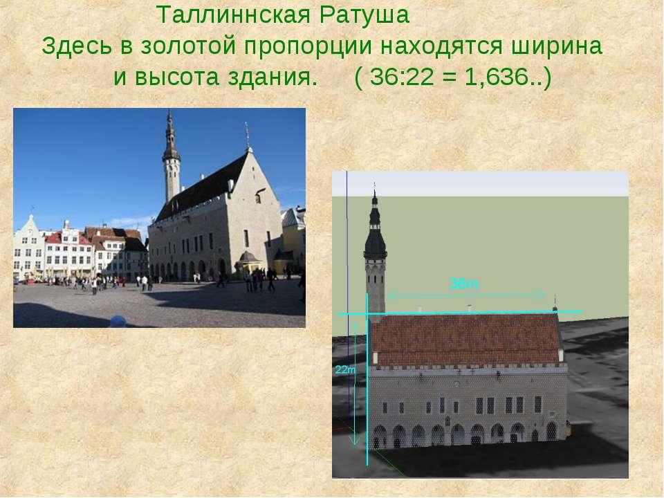 Таллиннская Ратуша Здесь в золотой пропорции находятся ширина и высота здания...