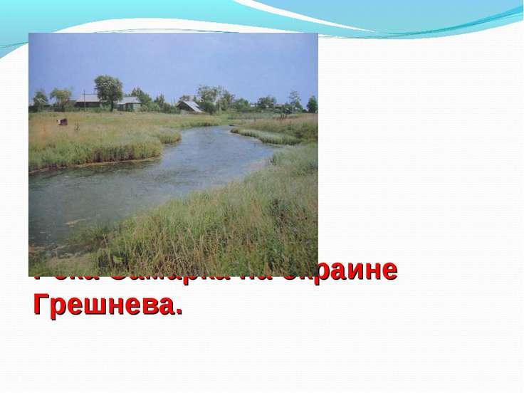 Река Самарка на окраине Грешнева.