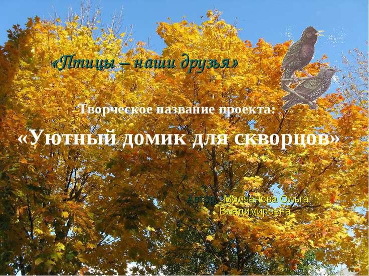 Творческое название проекта: «Уютный домик для скворцов» Автор: Молчанова Оль...