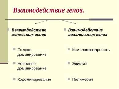 Взаимодействие генов. Неполное доминирование Взаимодействие неаллельных генов...