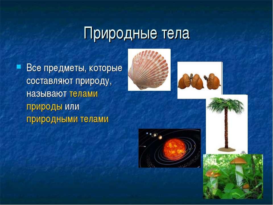 Природные тела Все предметы, которые составляют природу, называют телами прир...