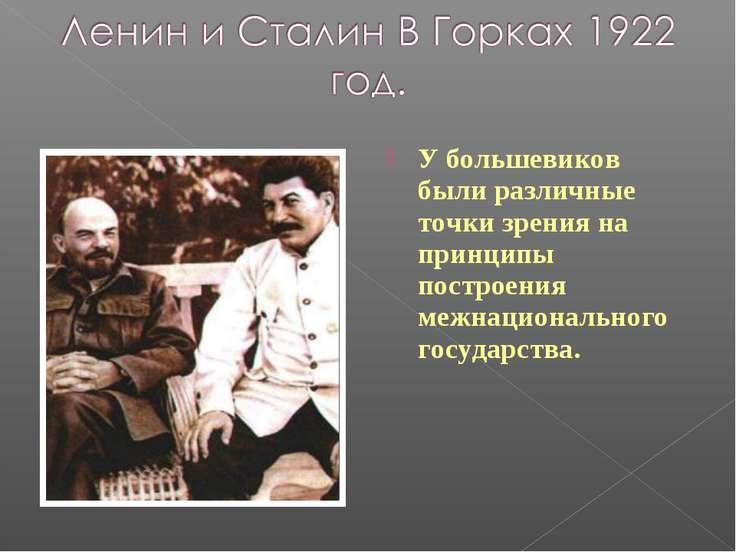 У большевиков были различные точки зрения на принципы построения межнациональ...