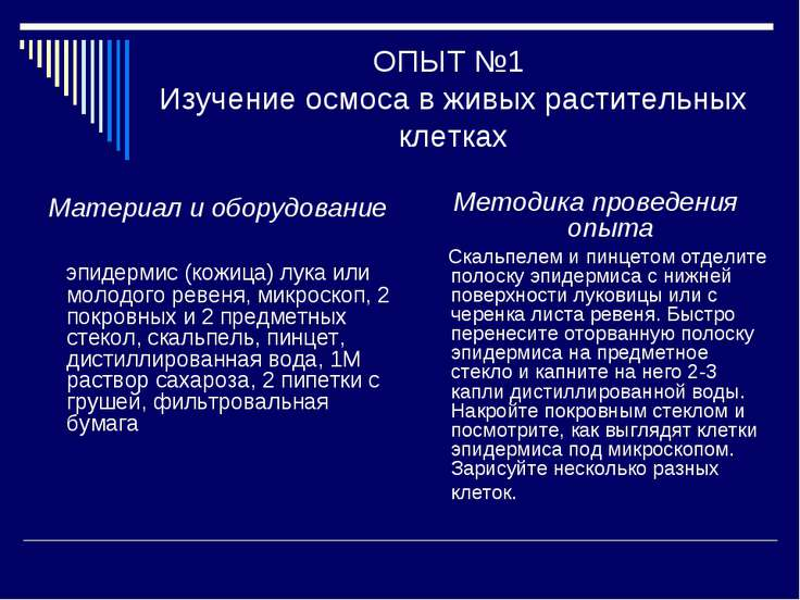 ОПЫТ №1 Изучение осмоса в живых растительных клетках Материал и оборудование ...