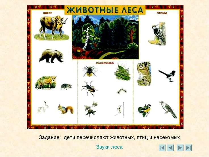 Задание: дети перечисляют животных, птиц и насекомых Звуки леса