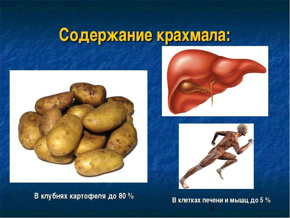 Содержание крахмала: В клубнях картофеля до 80 % В клетках печени и мышц до 5 %