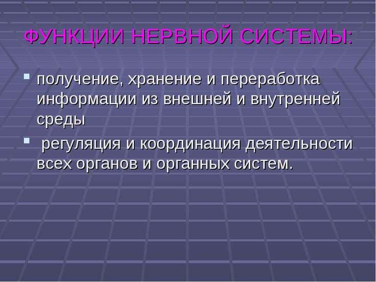 ФУНКЦИИ НЕРВНОЙ СИСТЕМЫ: получение, хранение и переработка информации из внеш...