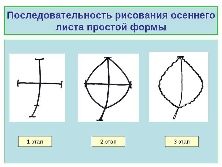 Последовательность рисования осеннего листа простой формы 1 этап 2 этап 3 этап
