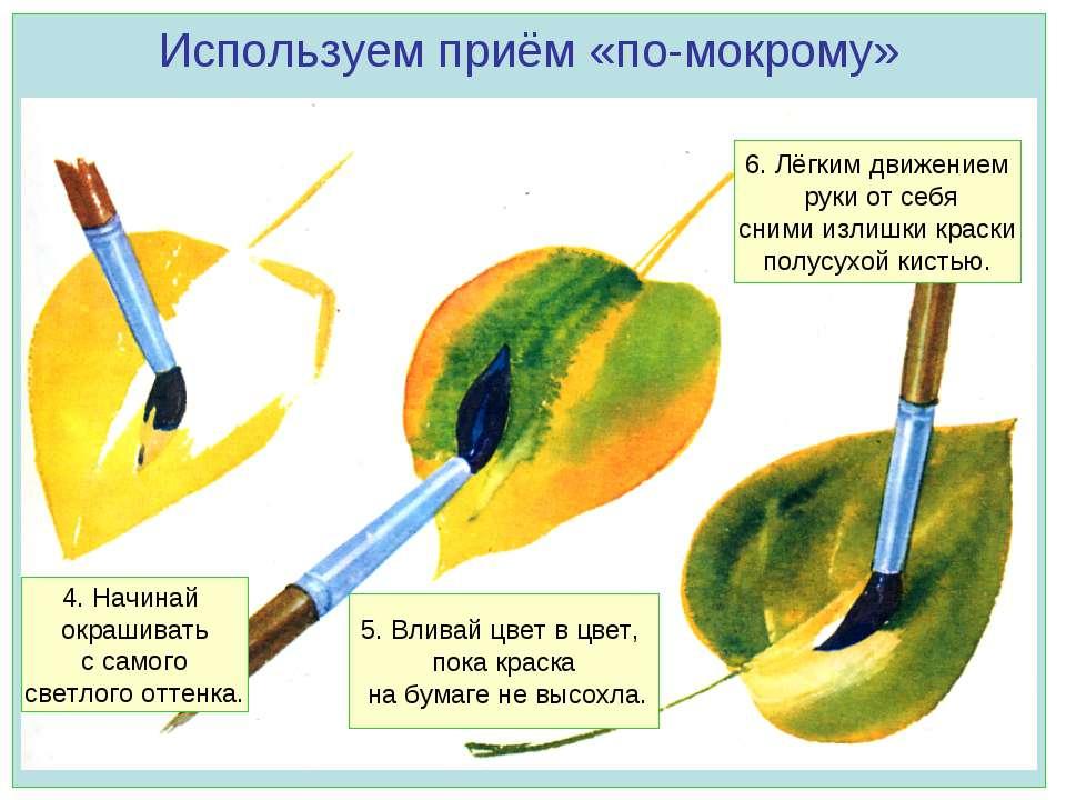 Используем приём «по-мокрому» 4. Начинай окрашивать с самого светлого оттенка...