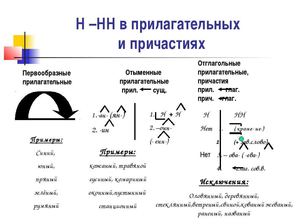 Н –НН в прилагательных и причастиях Первообразные прилагательные Отыменные пр...