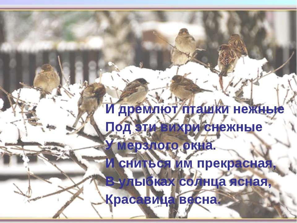 И дремлют пташки нежные Под эти вихри снежные У мерзлого окна. И сниться им п...