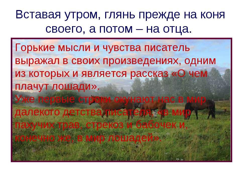 Вставая утром, глянь прежде на коня своего, а потом – на отца. Горькие мысли ...