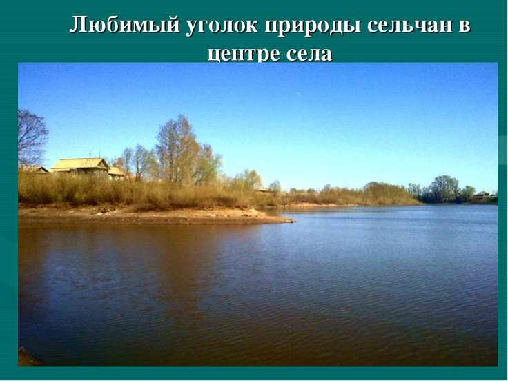 Любимый уголок природы сельчан в центре села